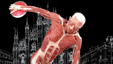 real-bodies-milano